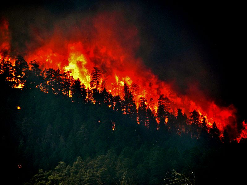 Wildfire torching trees