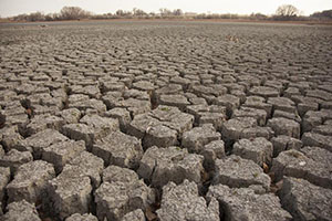 Photo of dry, cracked lakebed
