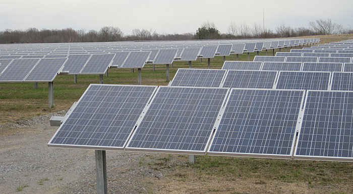 Solar panels arrayed in rows at Shelby Farms solar farm