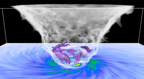 still image from animation shows vortices as tubelike structures