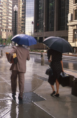 Photograph of people with umbrellas walking in rain