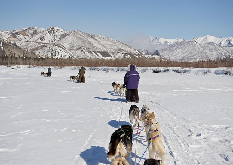 Mushing on the Yukon River in winter. (Image: NPS/Josh Spice)