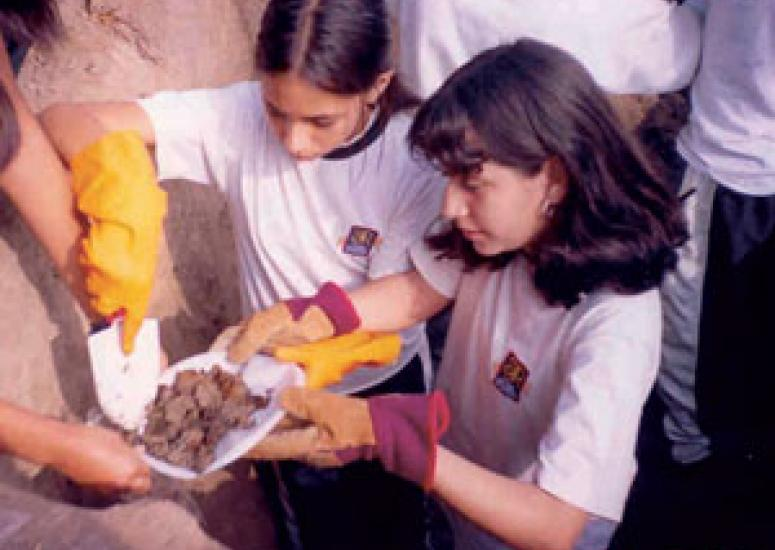 Photograph of students standing in a hole, collecting soil samples