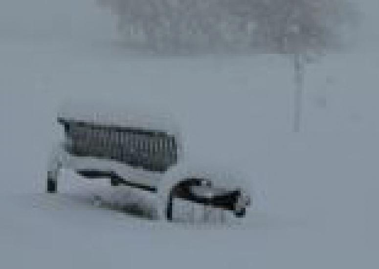 A snow-covered bench in Louisville, CO