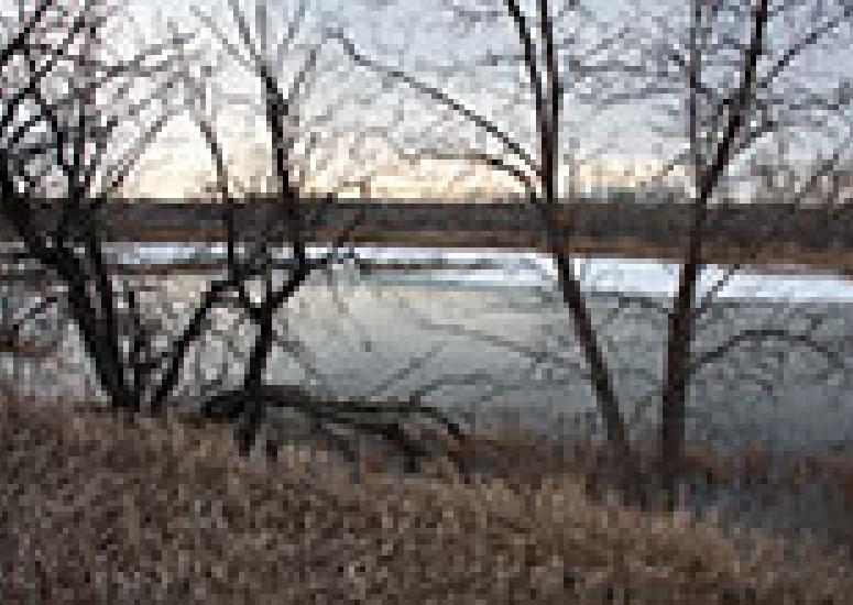 Sawhill Pond in winter.