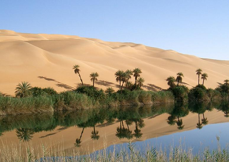 Greenhouse gases & past African rain: Photo of Ubari Oasis in southern Libya