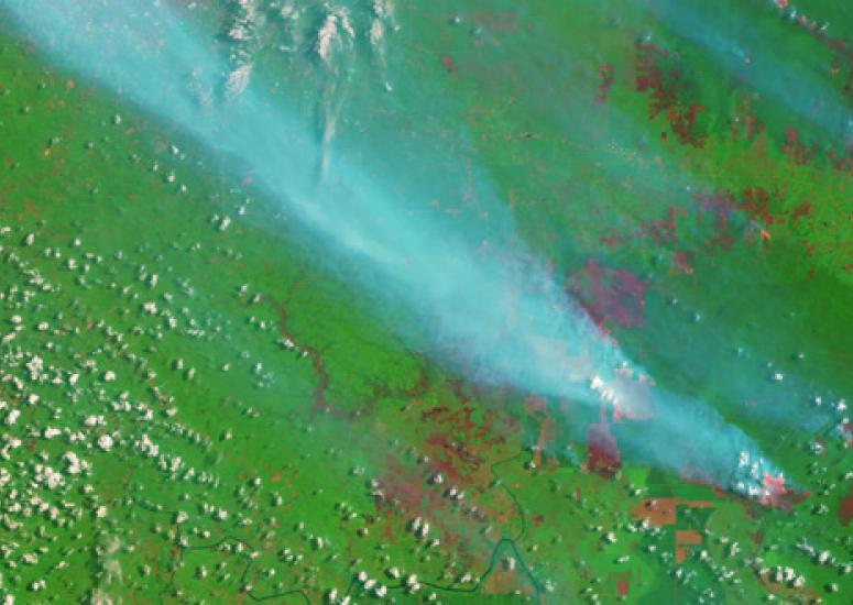 2015 wildfires in Sumatra, as seen from space