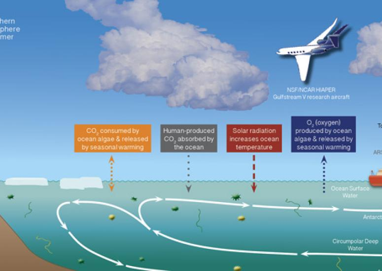 ORCAS infographic shows how air-sea exchange of gases will be studied over Southern Ocean