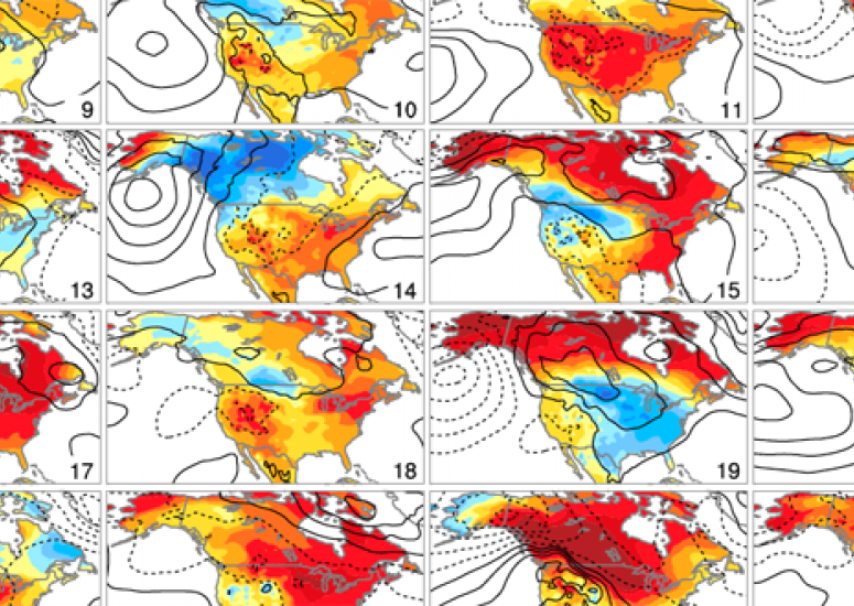North American temperature trends for 30 members of the CESM Large Ensemble