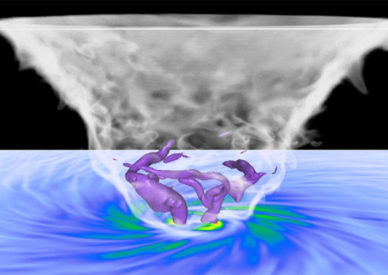 Scientists visualize tornado's winds: still image from animation shows vortices as tubelike structures