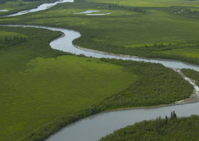 A river in Alaska